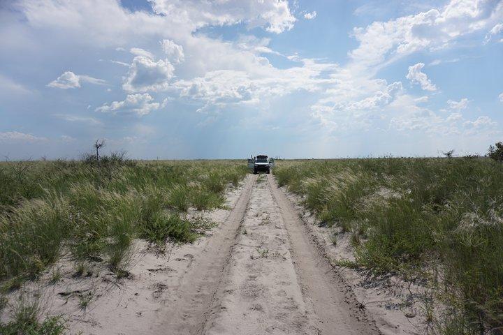 Sandpiste  Makgadikgadi  Pan Three Island Camp @ badenduo.de
