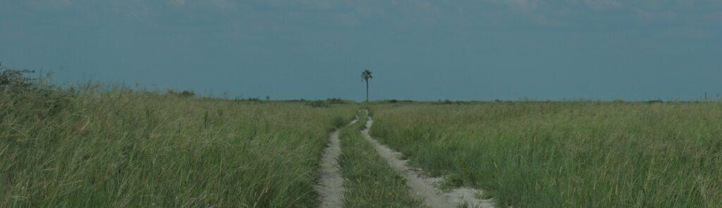 Makgadikgadi Pan Piste nach Three Island Camp © badenduo.de