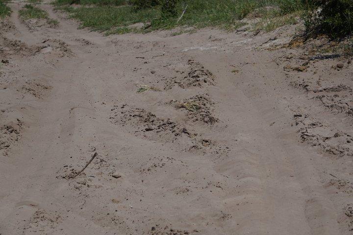 Tiefsand Piste  Makgadikgadi  Pan © badenduo.de