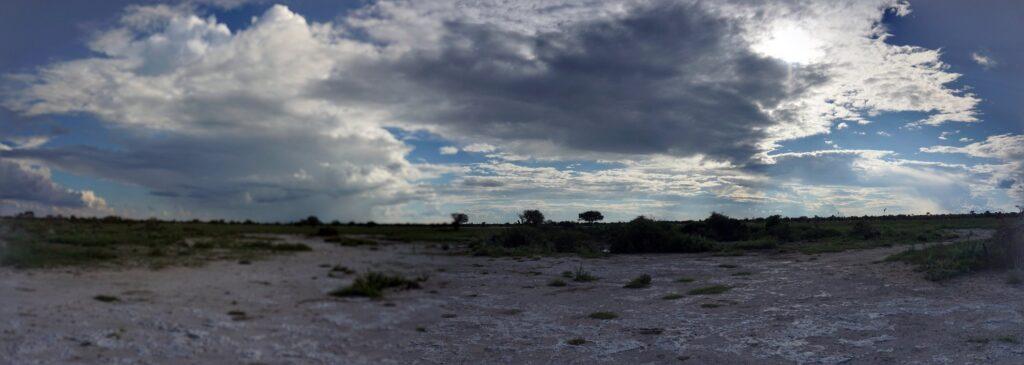 die Pans der Kalahari 18