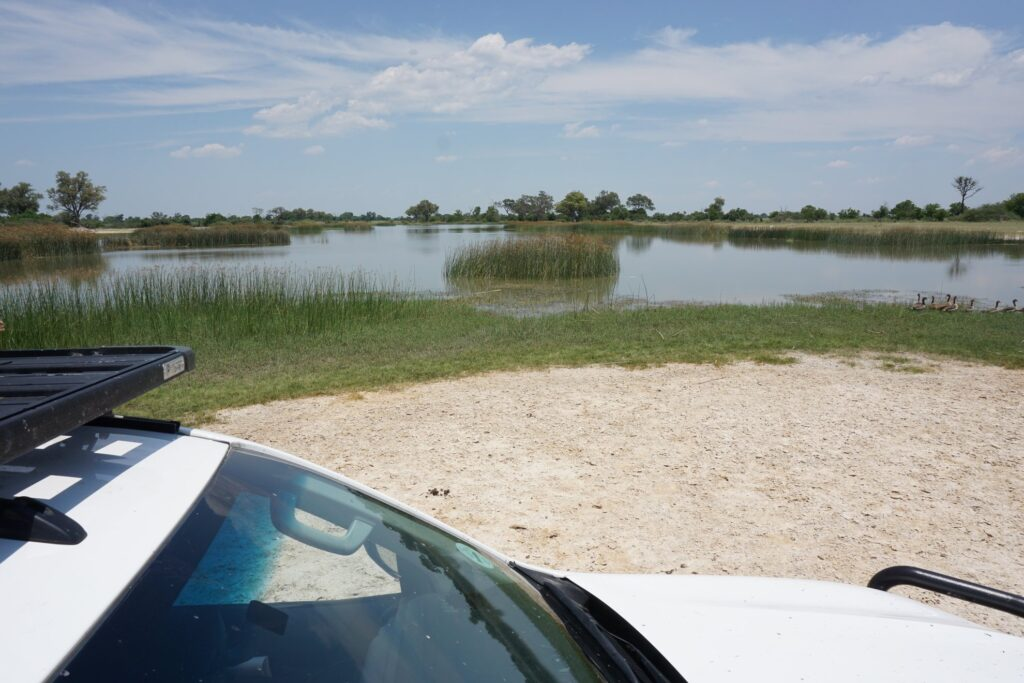 das Okavango 20