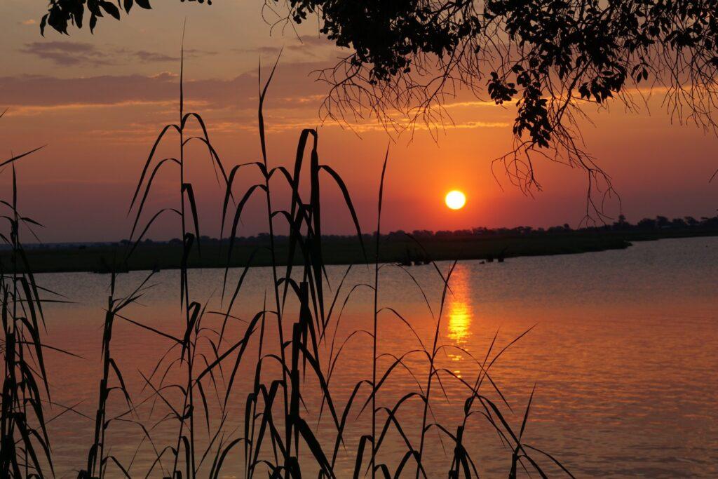 das Okavango 28