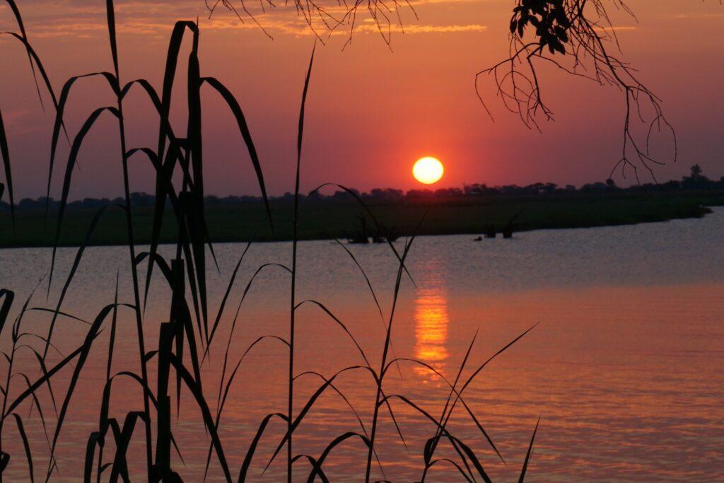 das Okavango 29