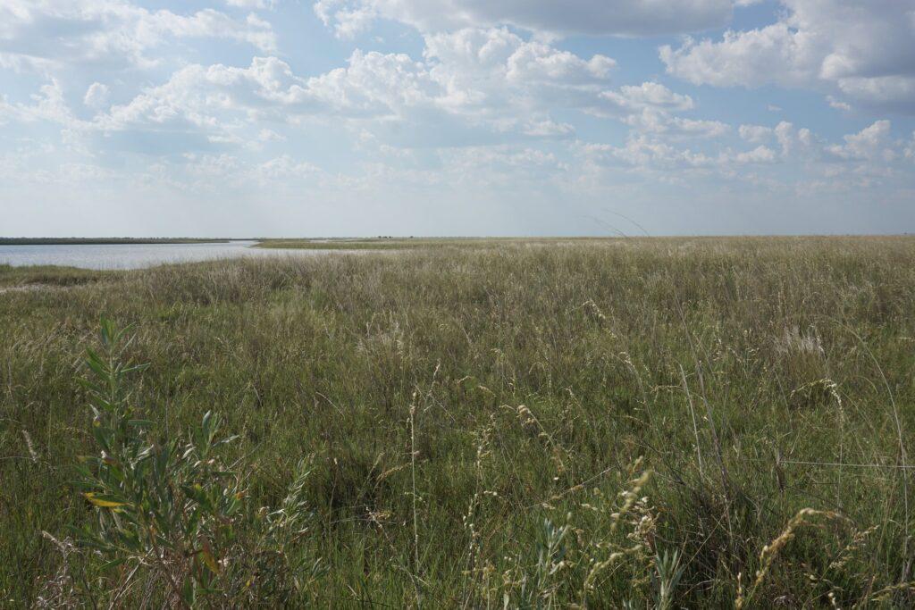 Kalahari © badenduo.de