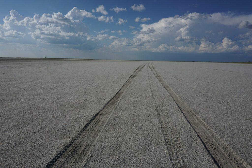 die Pans der Kalahari 21