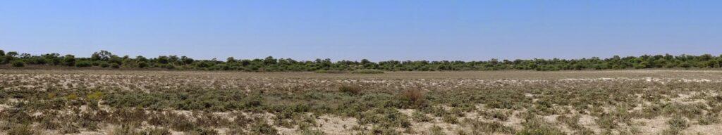 die Pans der Kalahari 3