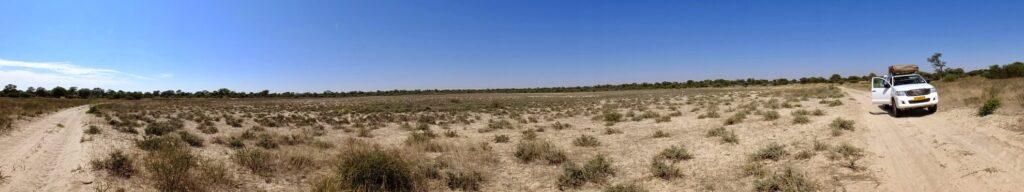 die Pans der Kalahari 5