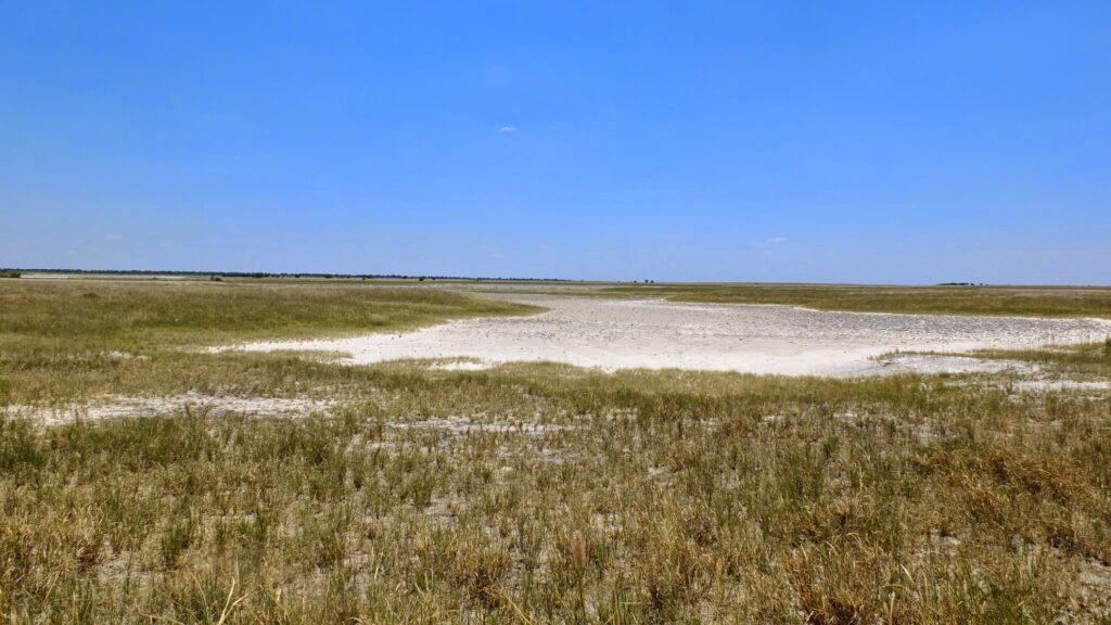 die Pans der Kalahari 8