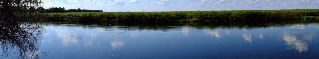 das Okavango 31