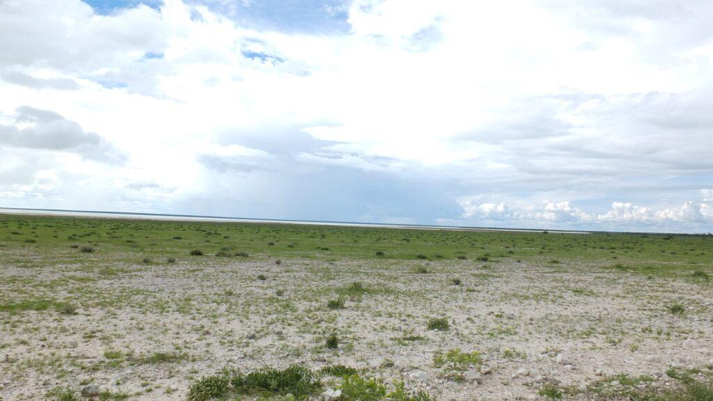 die Pans der Kalahari 12