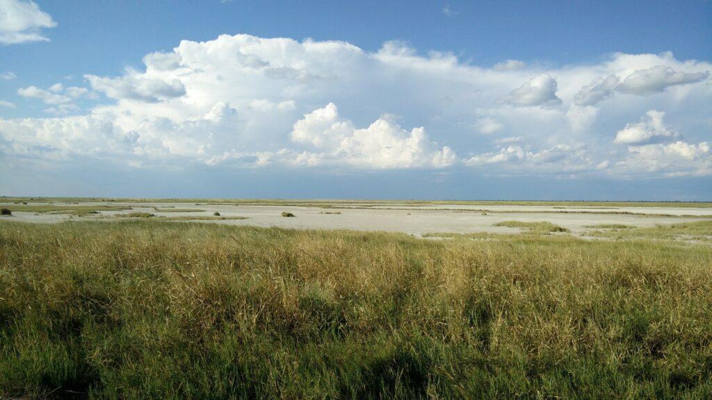 die Pans der Kalahari 23
