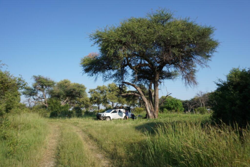Highlight Khwai Camp