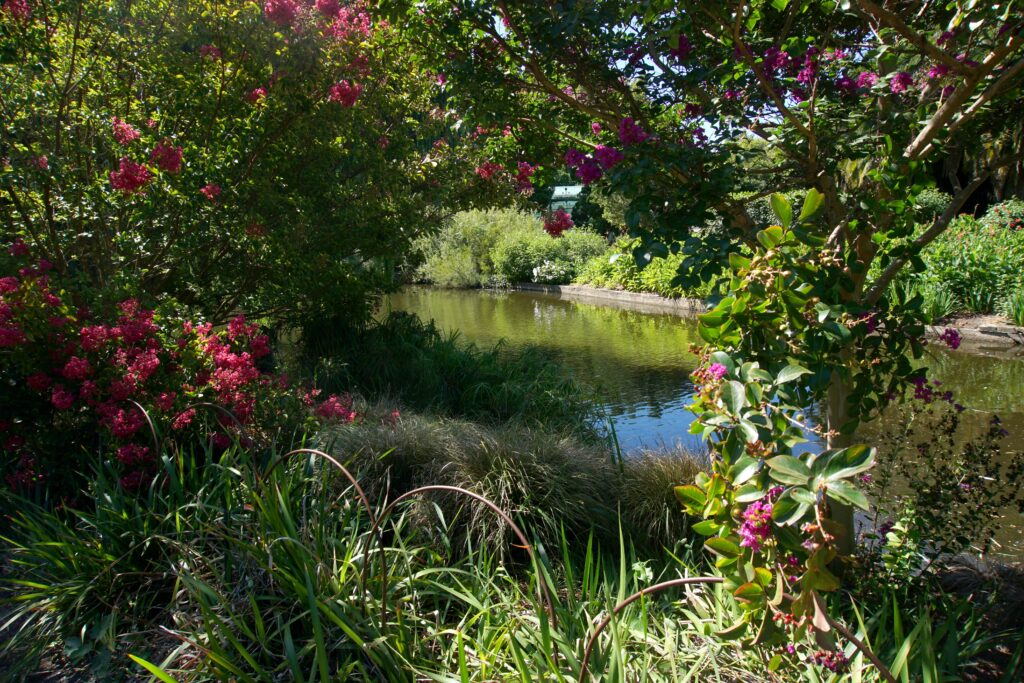 Adelaide Botanischer Garten
